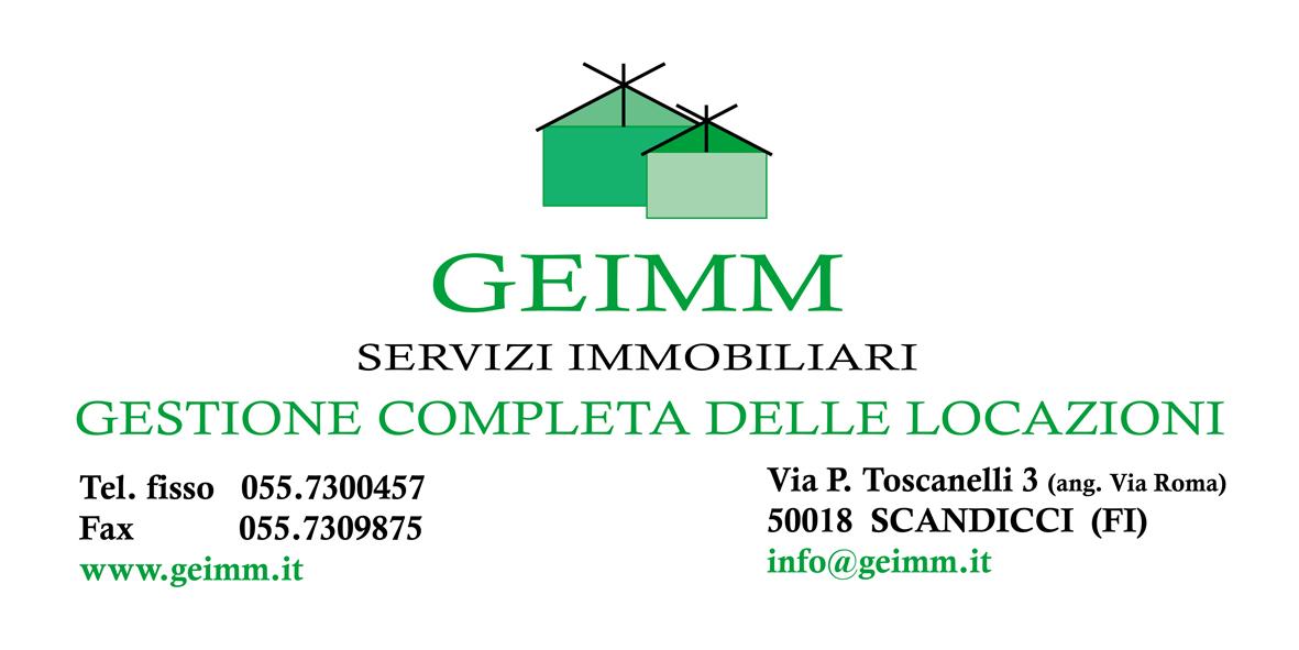 Geim logo